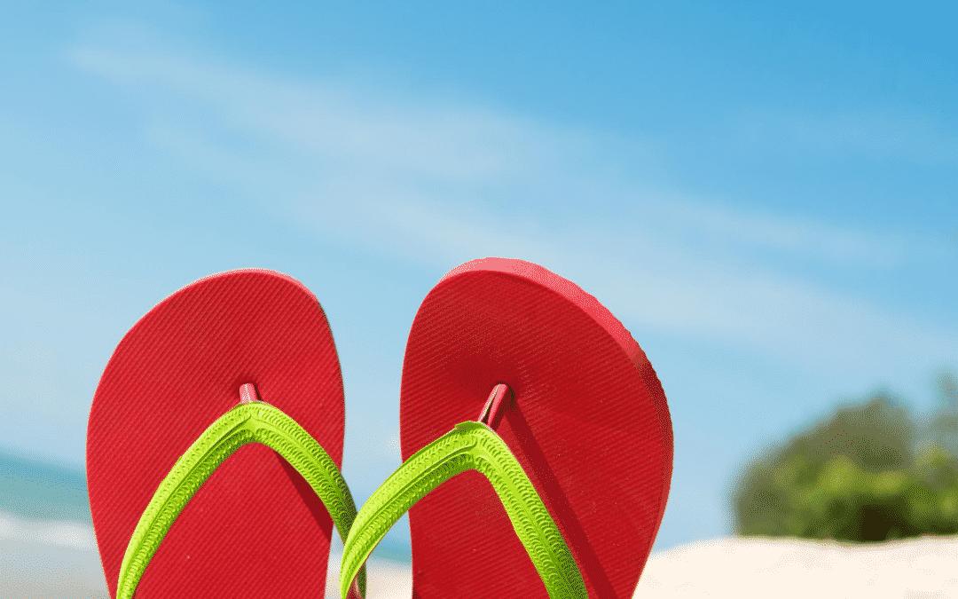 Fermeture estivale du 1er août au 18 août
